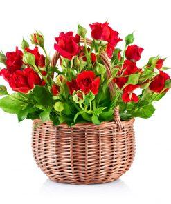 Arreglos en flores